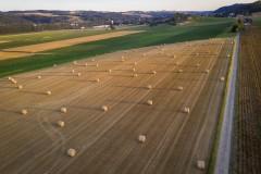 Rouleaux de paille dans un champ