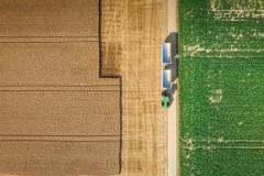 Tracteur attendant le blé